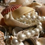 History of Pearl Hunting and Cultured Pearl Stone
