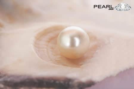 Pearl Stone-A Composition of Aragonite And Conchiolin