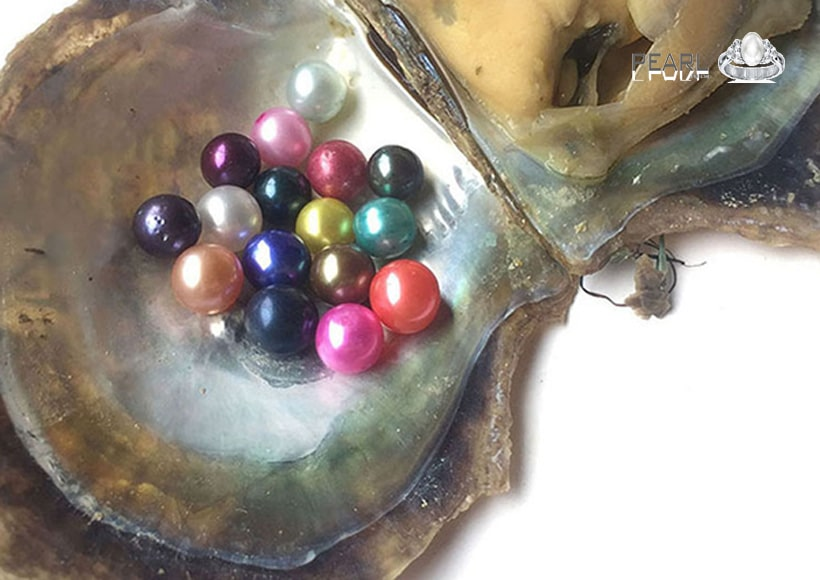 the-nine-colored-pearls-and-their-symbolic-meaning-1